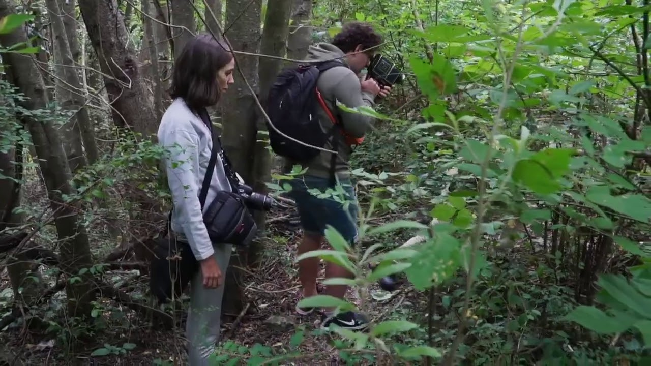 Ecosistemas de la Costanera Sur de Matías Szulansky